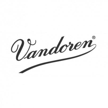 ANCE RICO PLASTICOVER SAX SOPRANO 2,5